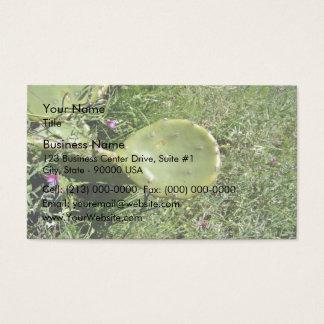 Crunchy Nopal texture Business Card