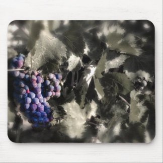 Crush at Tefft Cellars main vineyard Mouse Pad