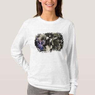 Crush at Tefft Cellars main vineyard T-Shirt  sc 1 st  Zazzle & Man Crush T-Shirts u0026 Shirt Designs | Zazzle