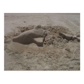 Crushed Dolphin Sandcastle Postcard