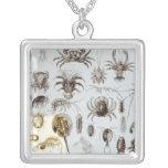 Crustacea and Arachnida Pendants