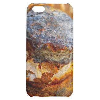 Crusty Head by Uncle Junk  ART iPhone 5C Covers