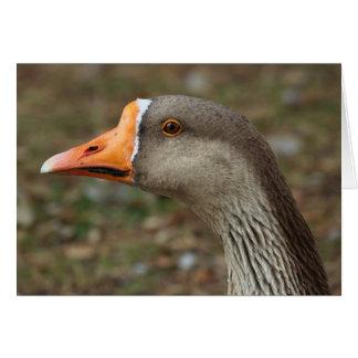 Cruz del ganso del cisne del ganso silvestre tarjeta de felicitación