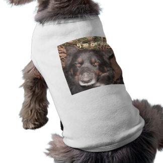 Cruz fornida del collie de la ropa del mascota playera sin mangas para perro
