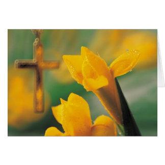 Cruz y narcisos tarjeta de felicitación