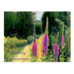 Crybaby Loosestrife Postcards