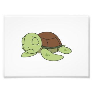 Crying Cute Baby Turtle Tortoise Greeting Card Photo Art