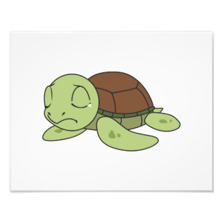 Crying Cute Baby Turtle Tortoise Greeting Card Photo