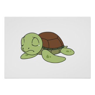Crying Cute Baby Turtle Tortoise Greeting Card Poster