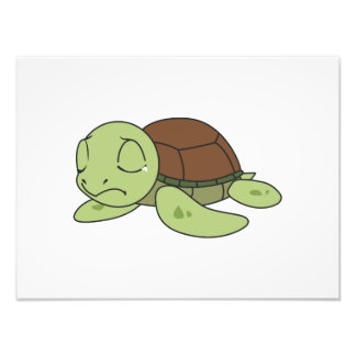 Crying Cute Baby Turtle Tortoise Invitation Stamps Photo Print