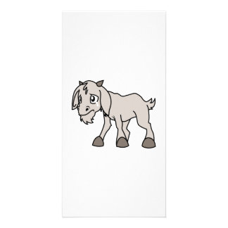 Crying Grey Young Goat Kid Animal Rights Day Picture Card