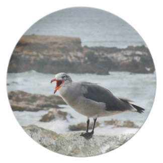 Crying Gull Plate