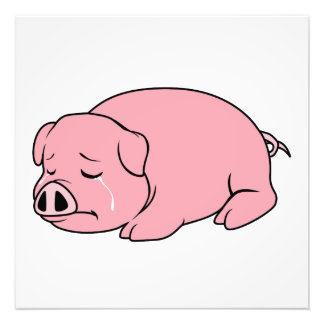 Crying Weeping Pink Pig Piglet Card Mug Pillow Pin Photo Print