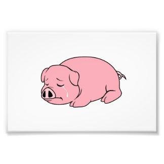 Crying Weeping Pink Pig Piglet Card Mug Pillow Pin Photo Art