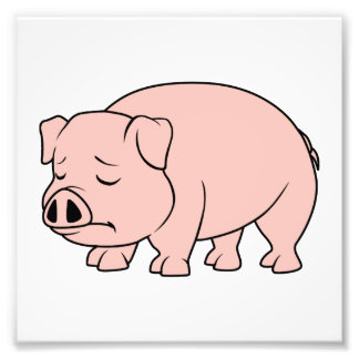 Crying Weeping Pink Piglet National Pig Day Photo Print