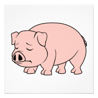 Crying Weeping Pink Piglet National Pig Day Photographic Print