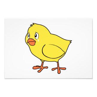 Crying Yellow Chick National Chicken Day Card Mug Photo Art