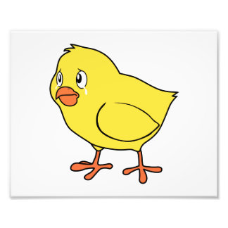 Crying Yellow Chick National Chicken Day Photo Print