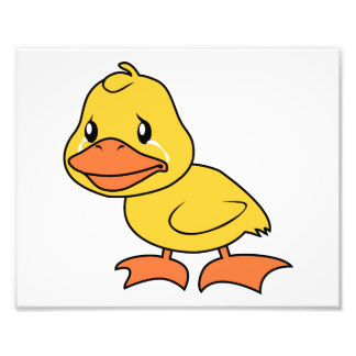 Crying Yellow Duckling Lame Duck Day Invitation Art Photo