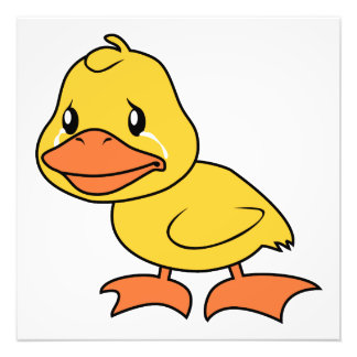 Crying Yellow Duckling Lame Duck Day Photo