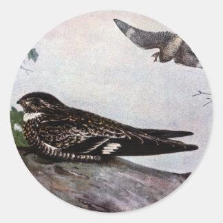Cryptic Nighthawk Classic Round Sticker