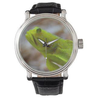 Cryptocentrus cinctus wrist watches