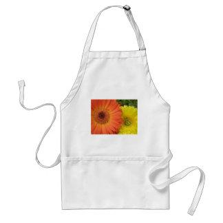 Crysanthemum anaranjado y amarillo delantales