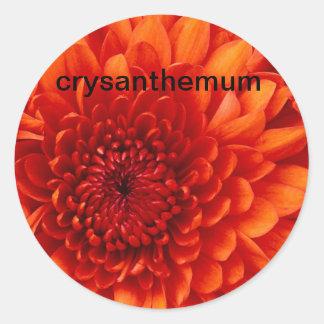 Crysanthemum Classic Round Sticker