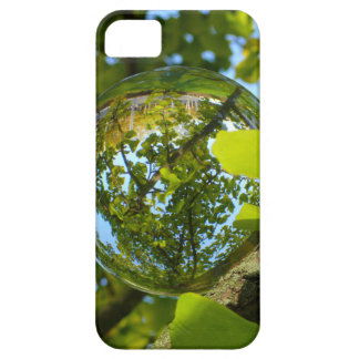 Crystal Ball in Gingko tree iPhone SE/5/5s Case