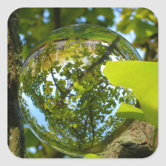 Crystal Ball in Gingko tree Square Sticker