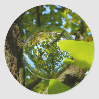 Crystal Ball in Gingko tree Classic Round Sticker