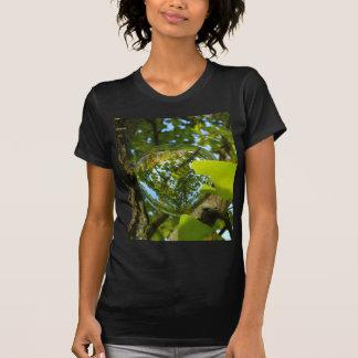 Crystal Ball in Gingko tree T-shirts