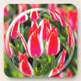 Crystal ball with red-white tulips in field coaster