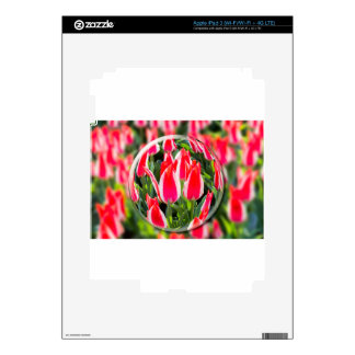 Crystal ball with red-white tulips in field iPad 3 decals