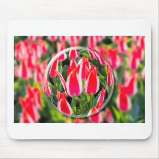 Crystal ball with red-white tulips in field mouse pad