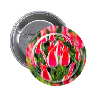 Crystal ball with red-white tulips in field pinback button