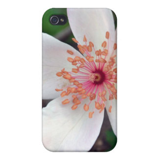 Crystal Fairy Rose Flower Cases For iPhone 4