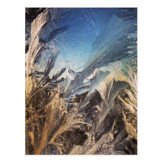 Crystal Ice Chrysalis. Frosty window. Postcard