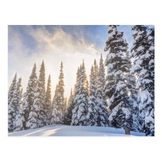 Crystal Mountain Ski Resort, near Mt. Rainier 1 Postcard