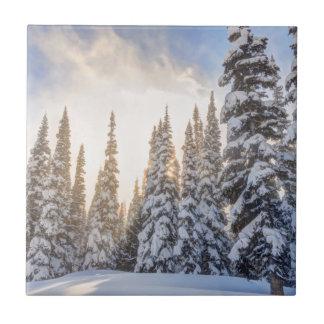 Crystal Mountain Ski Resort, near Mt. Rainier 1 Tile