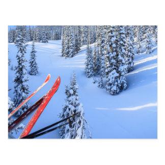 Crystal Mountain Ski Resort, near Mt. Rainier 2 Postcard