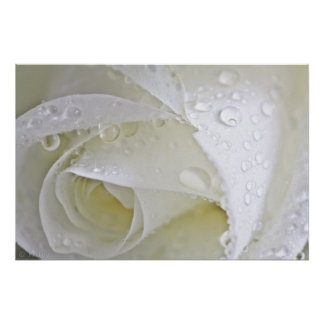 Crystal Rain Poster