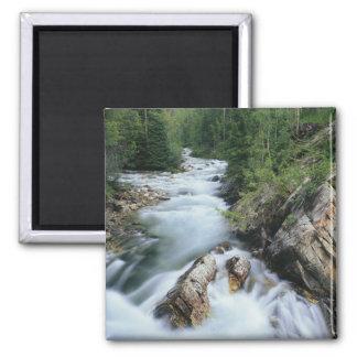 Crystal River, Gunnison National Forest, Magnet