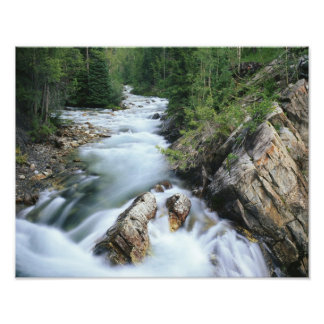 Crystal River, Gunnison National Forest, Photo Print