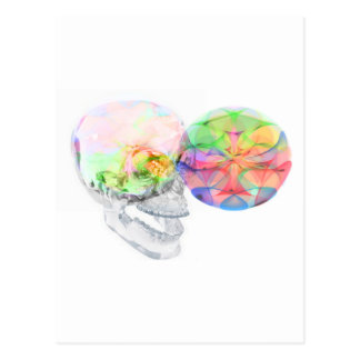 Crystal Skull DMT Pineal Alchemy Postcards