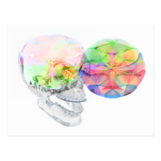 Crystal Skull DMT Pineal Alchemy Post Card