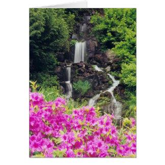 Crystal Springs Garden 1 Cards