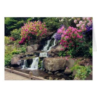 Crystal Springs Garden 2 Greeting Cards