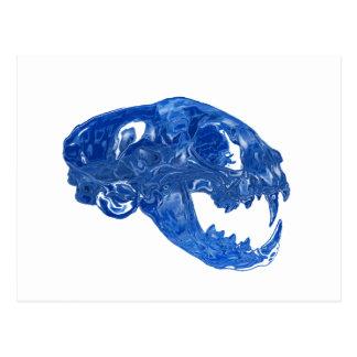 Crystal Water Cat Skull Postcard
