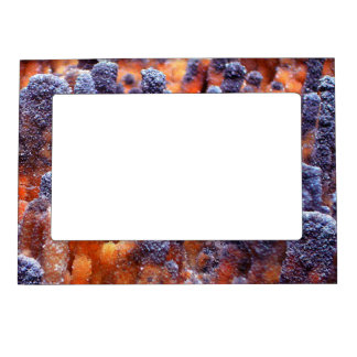 Crystals in a Strange Land Magnetic Picture Frame